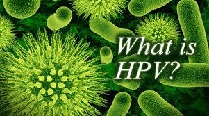https://bilalisgynaikologos.gr/wp-content/uploads/2014/10/HPV-ΤΙ-ΕΙΝΑΙ11-1.jpg